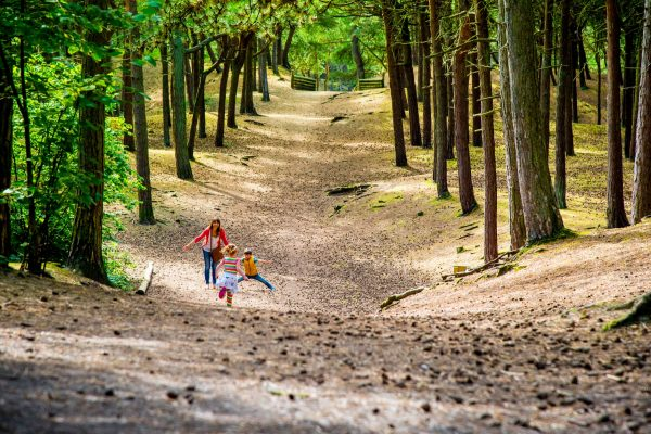 Formby Pinewoods family playing